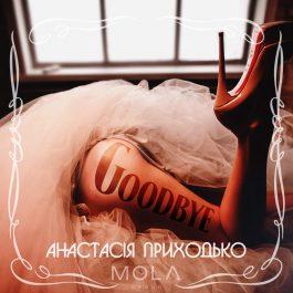 Анастасія Приходько - Goodbye
